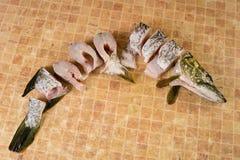 Partes de peixes frescas, pique Imagens de Stock Royalty Free