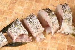 Partes de peixes frescas, pique Imagem de Stock Royalty Free