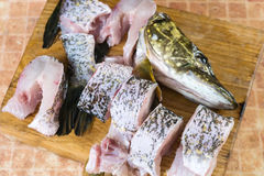 Partes de peixes frescas, pique Fotografia de Stock
