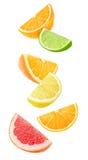 Partes de queda isoladas do citrino imagens de stock