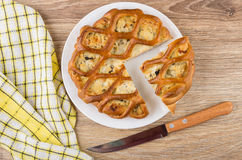 Partes de torta da galinha enchidas na placa, na faca e no guardanapo Imagem de Stock