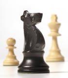 Partes de xadrez Fotos de Stock Royalty Free