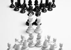 Partes de xadrez alinhadas estrategicamente Imagens de Stock Royalty Free