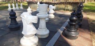 Partes de xadrez para crianças imagens de stock royalty free