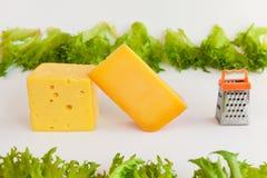 Partes dos queijos de gostos diferentes, grelha do metal para preparar o queijo raspado e as folhas dos frillis Imagem de Stock Royalty Free