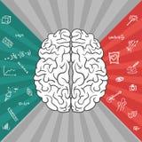 Partes esquerdas e direitas do cérebro Fotos de Stock Royalty Free