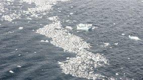 Partes pequenas de gelo que flutuam na baía na Antártica fotografia de stock