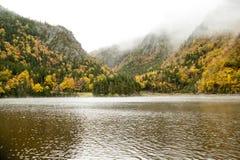 Partes superiores da montanha encobertas na névoa Fotografia de Stock