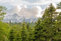 Partes superiores das montanhas de Cáucaso nas nuvens fotos de stock