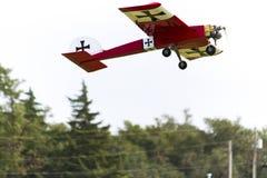 Partes superiores modelo da árvore de Plane Flying Past Imagem de Stock Royalty Free