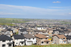 Partes superiores suburbanas do telhado Foto de Stock Royalty Free