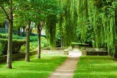 Parth i en parkera Arkivbilder