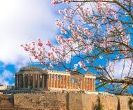 Parthenon spring season almond`s flrowers Acropolis in Athens. Greece royalty free stock image