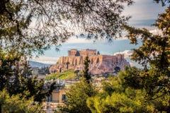 Parthenon temple with spring trees on the Acropolis in Athens, Greece Stock Photos