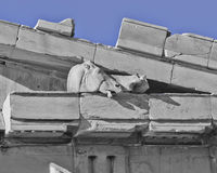Parthenon west pediment detail, horse head Stock Photos