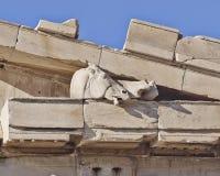 Parthenon west pediment, horse head, Athens Greece Stock Photography