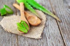 Parti di aloe vera Erba utile per cura di pelle e cura di capelli Immagini Stock