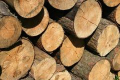 Parti di legno fotografie stock