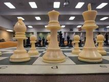 Parti di scacchi bianche Immagini Stock Libere da Diritti