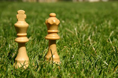 Parti di scacchi della regina e del re Immagine Stock Libera da Diritti