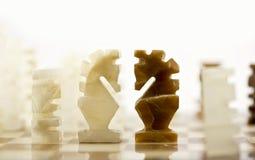 Parti di scacchi - i cavalieri affrontano fuori Immagine Stock