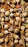 Parti superiori di filatura di legno Fotografia Stock