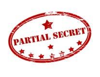 Partial secret. Rubber stamp with text partial secret inside,  illustration Stock Images