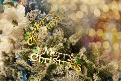 Christmas tree and blurred lights royalty free stock photo