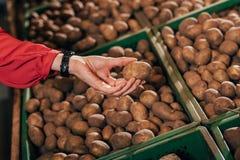 Partial view of shopper choosing fresh raw potato in hypermarket Royalty Free Stock Photos