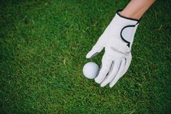 partial view of woman in golf glove putting ball on green lawn
