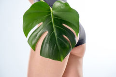 Partial view of young woman with green leaf on buttock, skincare concept. Close-up partial view of young woman with green leaf on buttock, skincare concept royalty free stock images