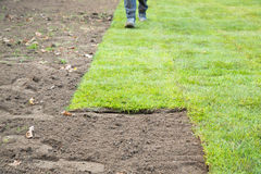 Partially laid lawn from grass turf Stock Images
