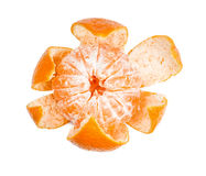 Partially purified mandarin Stock Images