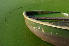 Partially sunken moored wooden rowboat with leaves. Stock Photos