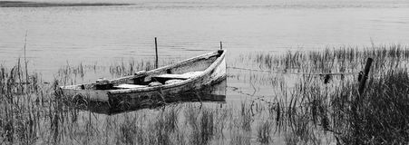 Partially Sunken Skiff In Marsh BW. Partially sunken skiff in tidal marshland captured at low tide and converted to black&white Royalty Free Stock Images