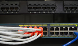 Partially view of LAN network switch with  Ethernet cables plugg Stock Images