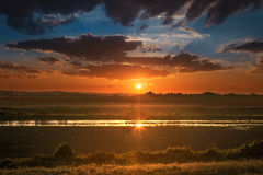 Partialy flooded cultivated land at sunset Stock Photo