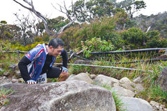 Participant climbing up Mt Kinabalu Stock Photo