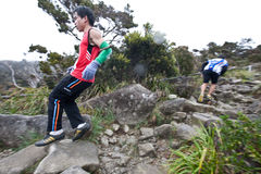Participant running down Mt Kinabalu Royalty Free Stock Photography