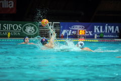 Participant(s) of the hungarian water polo national championship,Ujpest against Ferencvaros match at February 14, 2009 in Budapest Stock Photography