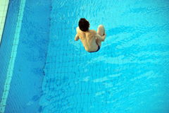 Participant(s) of the spring-board diving championship at July 02, 2009 in Budapest, Hungary. Royalty Free Stock Photo