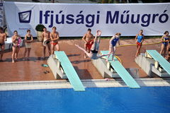 Participant(s) of the spring-board diving championship at July 02, 2009 in Budapest, Hungary. Stock Photos