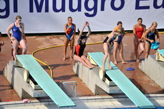 Participant(s) of the spring-board diving championship at July 02, 2009 in Budapest, Hungary. Royalty Free Stock Image