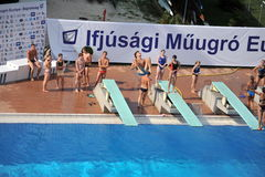 Participant(s) of the spring-board diving championship at July 02, 2009 in Budapest, Hungary. Stock Photography