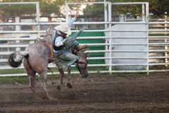Participant at the Willits rodeo. WILLITS, CA - JULY 3: Participant at the Willits Frontier Days, California's oldest continuous rodeo, held July 3, 2010 in Royalty Free Stock Image