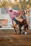 Participant at the Willits rodeo Stock Image