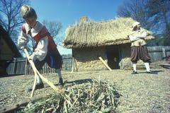 Participante que trabaja en yarda Foto de archivo
