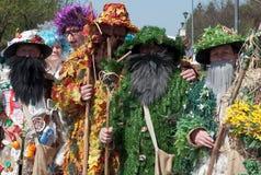 Participantes de carnival-1 imagem de stock