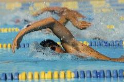 Participantes na raça da natação imagens de stock