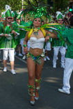Participantes no der Kulturen de Karneval Fotos de Stock Royalty Free